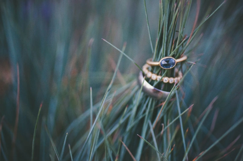 The bride and grooms rings styled in blades of grass. Flowers by Seascape Flowers. Coordinated by Coastside Couture. Photography by Two Foxes Photography.  Location at the Santa Lucia Preserve
