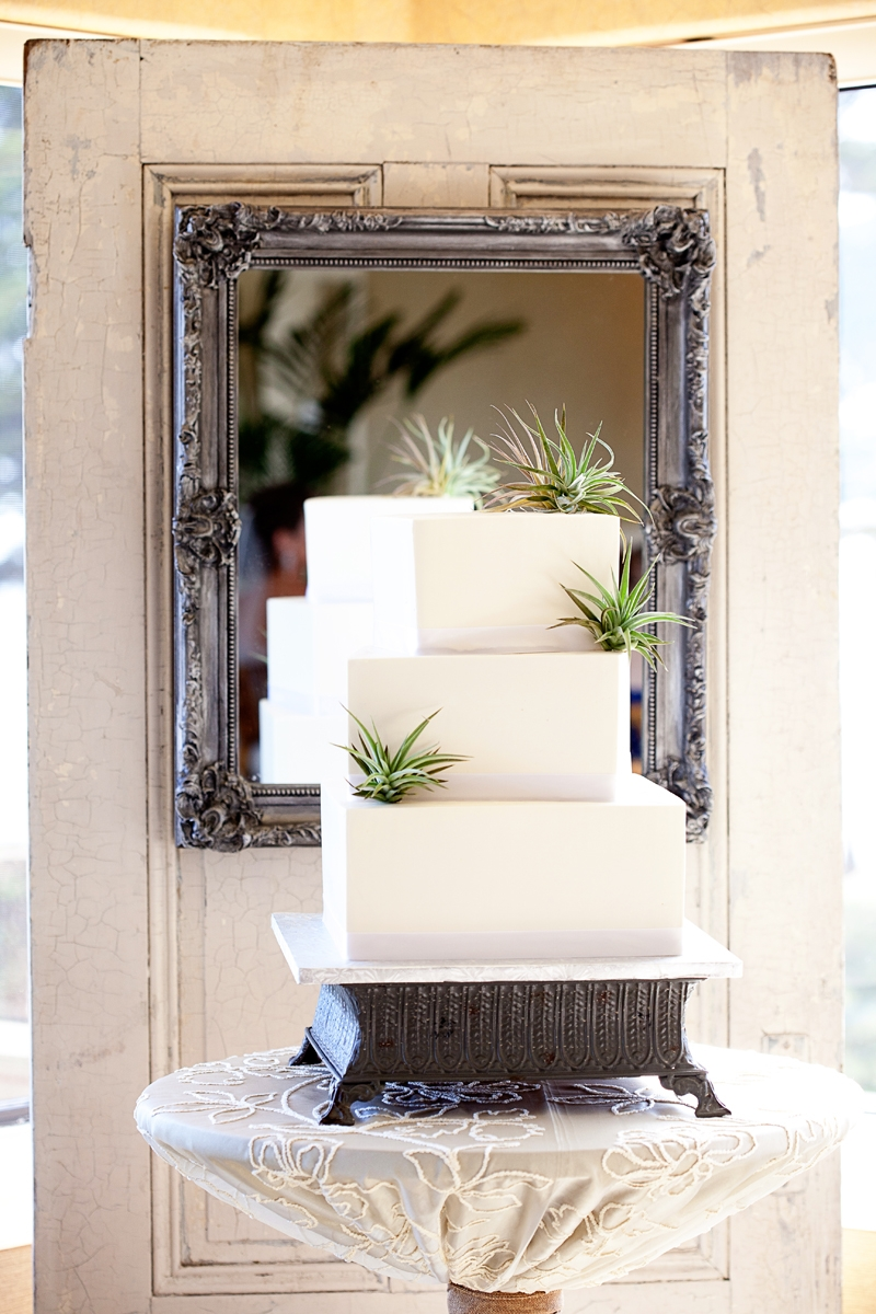 Tillandsia decorated cake by The Buttery and was framed with this weathered vintage door and mirror back. Flowers and decor by Seascape Flowers. Photographed by Danielle Gillet Photography. Linens by La Tavola Linens. Venue at Seascape Beach Resort.