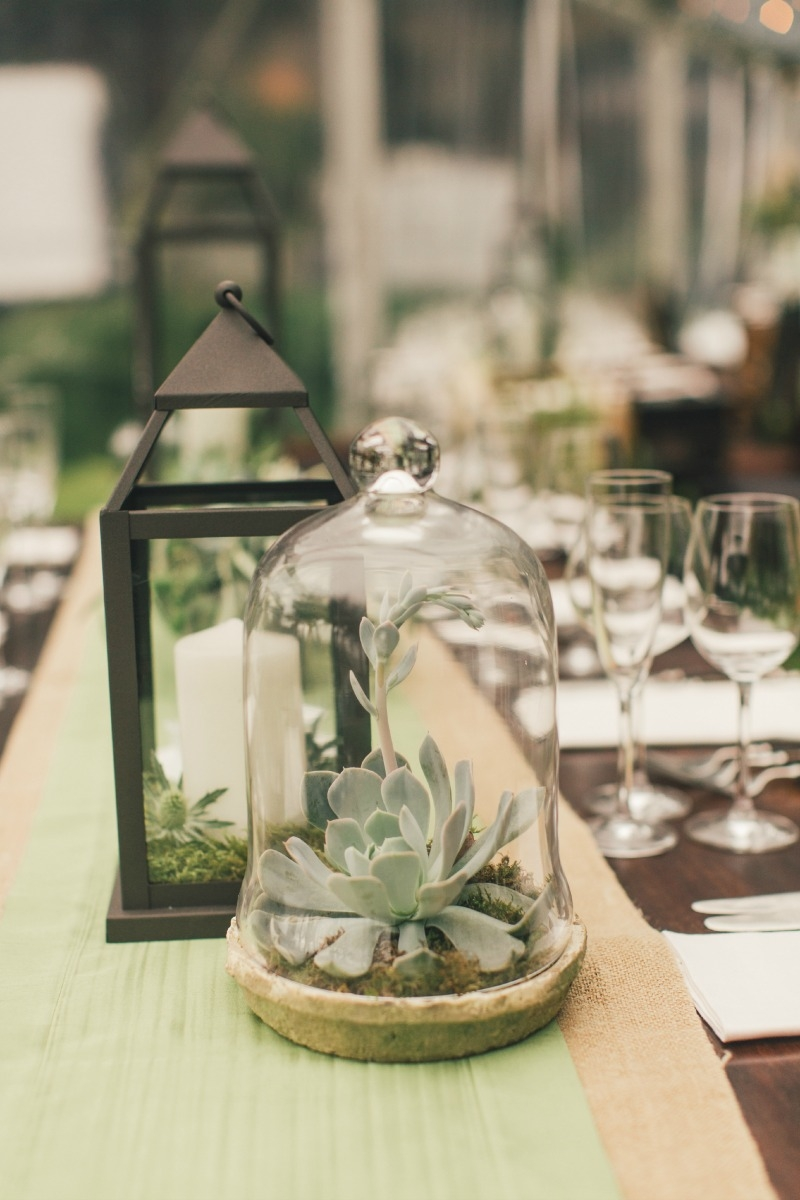 Casual cloche jars filled with succulents centerpieces. Flower by Seascape Flowers. Coordinated by Coastside Couture. Photographed by Carlie Stasky Photography. Catering by A Taste of Elegance. Rentals from Classic Rentals. Tent from Chic Rentals. Ha