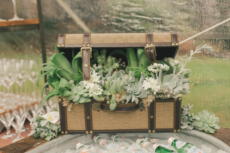 So in love with this vintage trunk filled with succulents! Flower by Seascape Flowers. Coordinated by Coastside Couture. Photographed by Carlie Stasky Photography. Catering by A Taste of Elegance. Rentals from Classic Rentals. Tent from Chic Rentals.