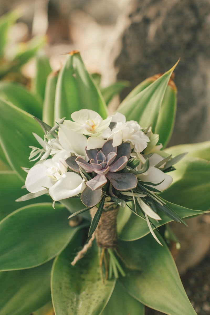 The stunning bridal bouquet  nestled in a giant agave. Flower by Seascape Flowers. Coordinated by Coastside Couture. Photographed by Carlie Stasky Photography. Catering by A Taste of Elegance. Rentals from Classic Rentals. Tent from Chic Rentals. Hai