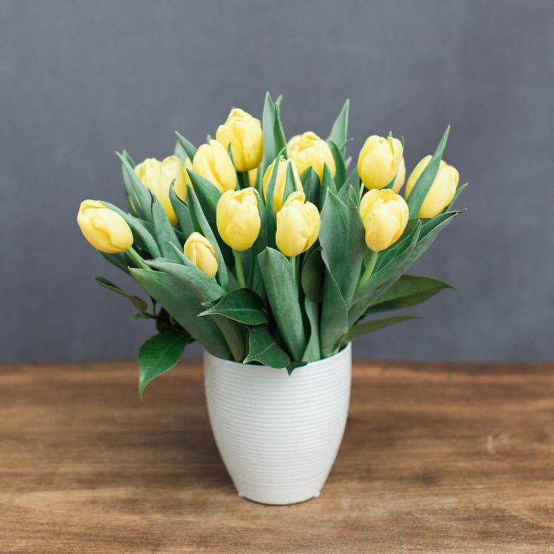Locally grown tulips available in an assortment of bright colors